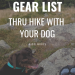 "graphic for a blog post titled ""gear list: thru hike with your dog"" for the appalachian trail"