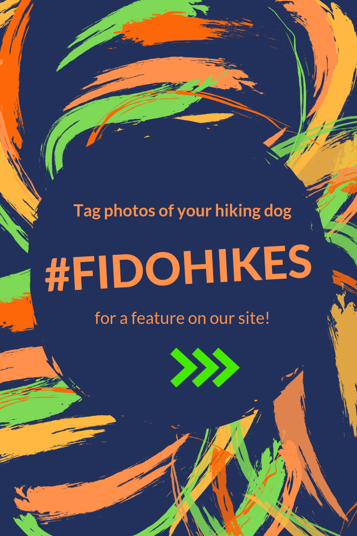instagram hastag request for fidohikes #fidohikes