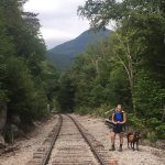 photo of a dog in New Hampshire on train tracks