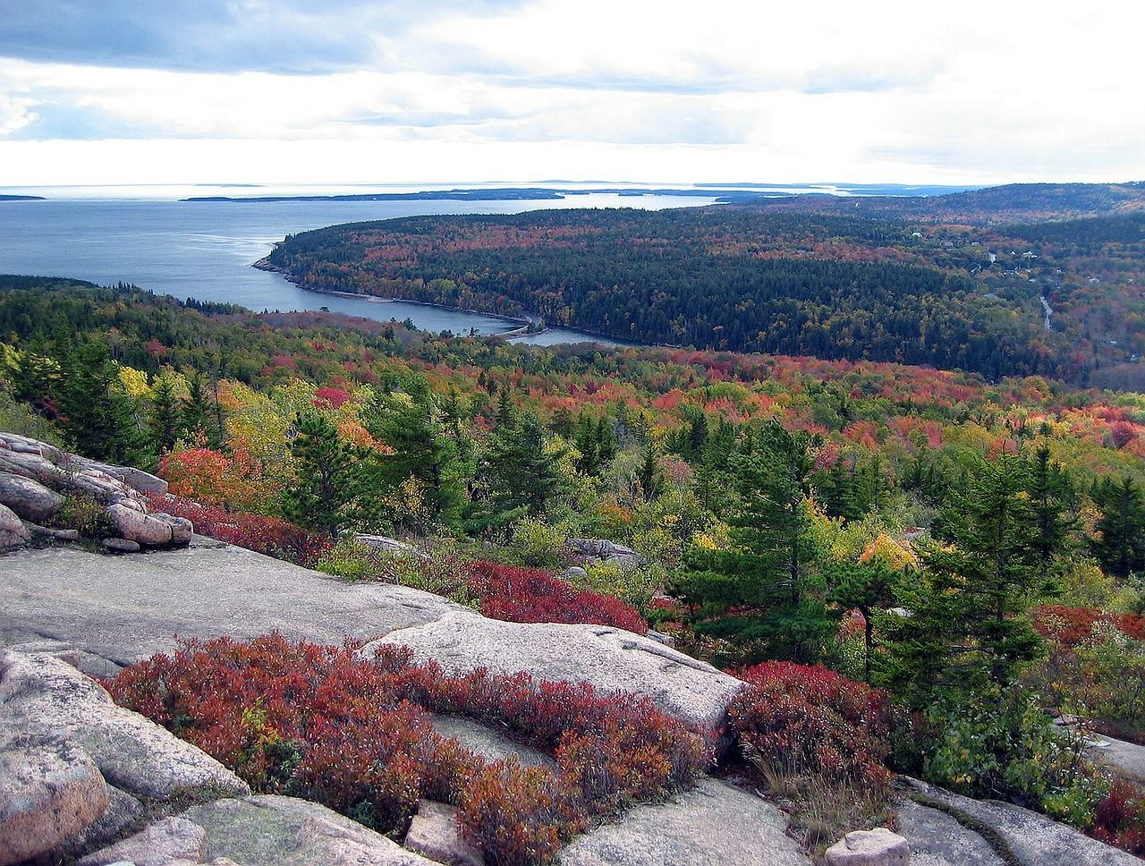 View of Fall Coastline in Acadia National Park