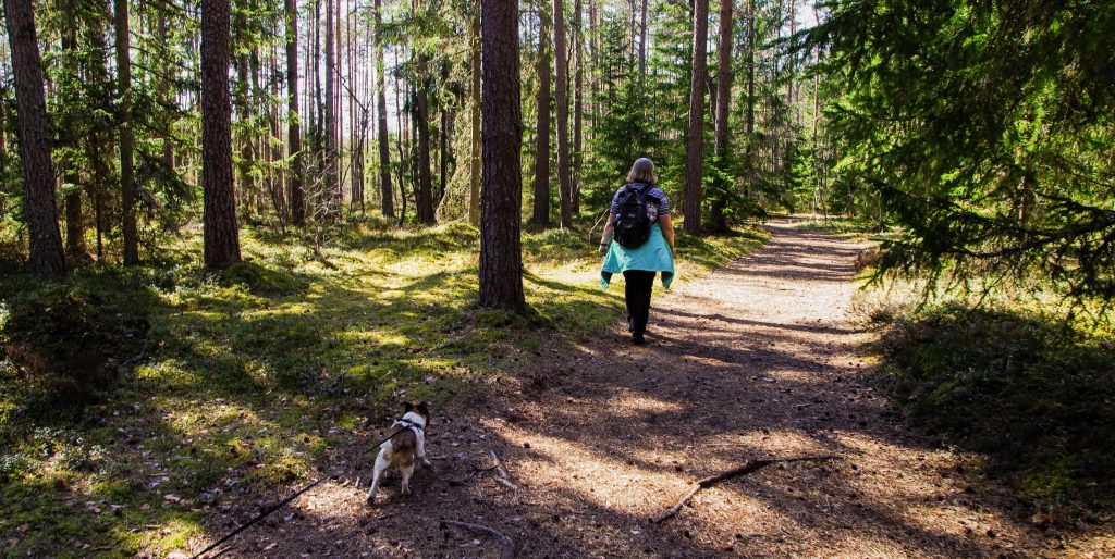 Photo of a dog and woman hiking in a forest on a trail